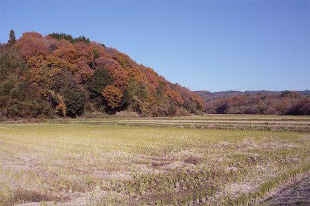 Satoyama1012
